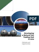Developing a Natural Gas Trading Hub