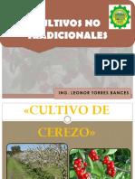 CEREZO (1)