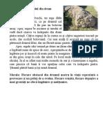 POVESTI PENTRU ANCA 9.doc