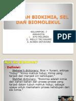 PPT BIOKIM BAB 1.ppt