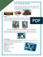 291150005-Flora-y-Fauna-de-Chincha.docx