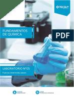 Laboratorio de Fundamento de Química N° 5