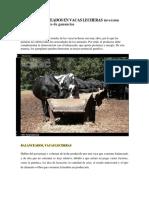 Uso de Balanceados en Vacas Lecheras