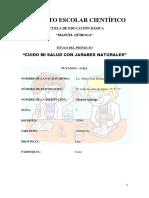 Proyecto Educativo Jarabe Para La Tos