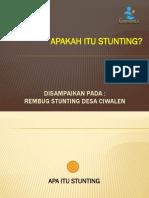 APA ITU STUNTING REV.pptx
