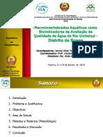 Macroinvertebrados Aquaticos como Bioindicadores de Avaliacao de Qualidade de Agua do Rio Umbeluzi (IIA-FNI)