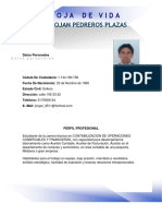 Hoja de vida .pdf