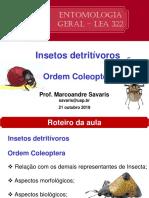 Aula teórica 12 - Insetos_Detritívoros_Coleoptera.pdf