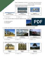 Guia de Trabajo de Historia Patrimonio Natural y Cultural Segundo Basico