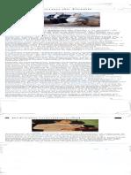 Safari - 21 nov. 2018 11:40.pdf
