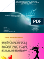 Diapositiva de Cambios Fisiologico Del Sistema Reproductor