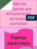 hbitosindgenasqueinfluenciaramosnossoscostumes-110403095911-phpapp01