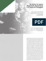 SITE Piconvallin Artigo01
