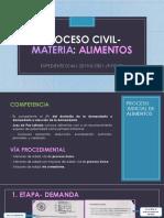 Proceso Civil Materia
