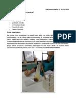 Relazione di chimica per il 30 ottobre di Elia Saracca Classe IC