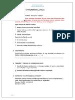 Clases de Campo-flujos Piroclasticos