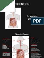 Chapter 13 Endocrine System