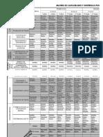 Capacidades-Procesos Mentales - 2012