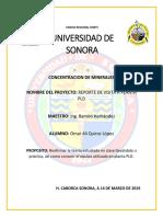 REPORTE DE VISITA A PLANTA PLD .docx