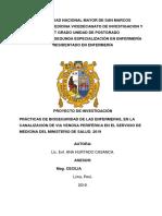Luisa Universidad Nacional Mayor de San Marcos