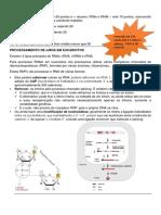 Processamento mRNA