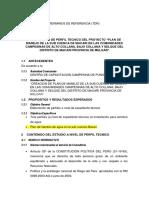 Tdr_ Perfil Propuesta