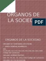 Organos de la sociedad