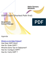 284345789-Mpls-Nsn-Training-Day-3-Ospf.pdf