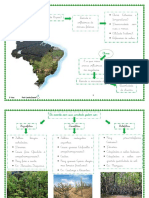 vegetacaoap6.pdf