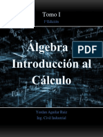 Algebra e Introduccion Al Calculo 1