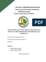 Educacion Sobre El Efecto Del Tabaco en El Barrio Villa Carmen Municipio de Santa Cruz (Autoguardado)