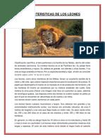 Caracteristicas Del Leon