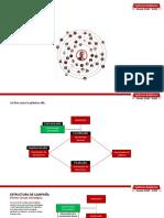 Estructura Campaña_2