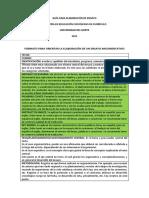 modelo ensayo.pdf