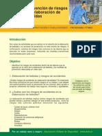 Prevencion-de-riesgos-en-elaboracion-de-bebidas.pdf
