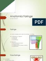 Anatomía Faringe
