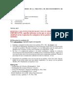 Esquema Informe Reconocimiento de Fases 4 de Noviembre