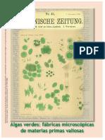 Obtencion_de_protocolos_para_el_aislamie.pdf