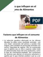 Factores Que Influyen en El Consumo de Alimentos (3)