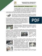 Caso N° 2    Pastelería y Repostería  Pastipan (1)
