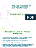 Protein Purification Br