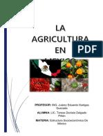La Agricultura en Mexico
