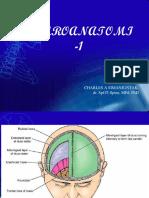 04c1-Neuroanatomi1 1 2018
