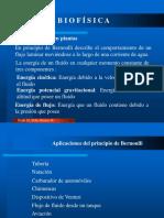 BIOFISICA-Flujo de fluidos en plantas.pptx