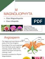 #2 Angiosperm