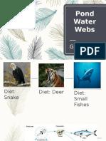 Pond Water Webs.pptx