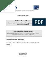 plano de estudo Rosana.pdf