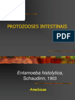 11-11 Protozooses intestinais.ppt