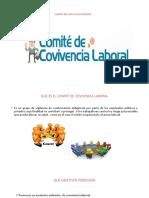Diapositiva Del Comite de Convivencia Laboral
