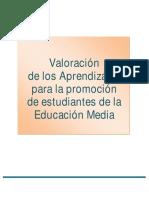 Sistema de Promoción en La Media, 2009 Versión Final